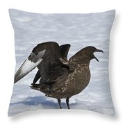 Antarctic Predator.. Throw Pillow
