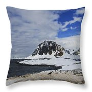 Antarctic Wilderness... Throw Pillow