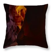 Antelope Canyon 29 Throw Pillow