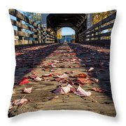 Antelope Creek Bridge Throw Pillow