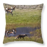 Antelope   Duck   And Coyote Throw Pillow