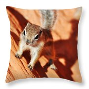Antelope Ground Squirrel Throw Pillow