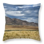 Antelope Island Camera Flats Throw Pillow