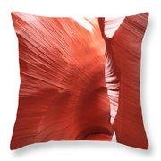 Antelope Passage Throw Pillow