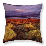 Antelope Valley Throw Pillow