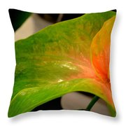 Anthurium In Red And Green Throw Pillow
