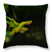 Anticipating Launch Throw Pillow