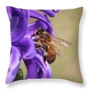 Anticipating The Nectar Throw Pillow