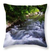Antietam Creek - Maryland Throw Pillow
