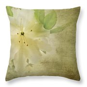 Antique Azalea Throw Pillow