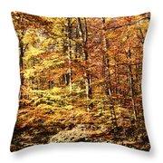 Antique Fall Throw Pillow