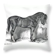 Antique Horse Drawing Throw Pillow
