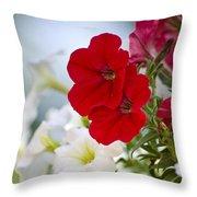 Antique Petunia Flowers Throw Pillow