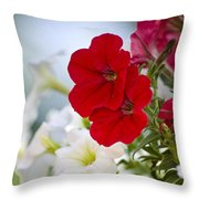 Antique Petunia Flowers Throw Pillow