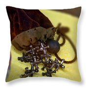 Antique Pouch Of Ball And Jacks Game Art Prints Throw Pillow