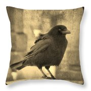Antique Sepia Crow Throw Pillow