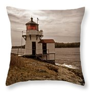 Antique Squirrel Point Throw Pillow by Skip Willits