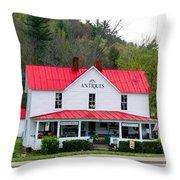 Antique Store Throw Pillow