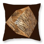 Antique White Gold Abstract Cube Throw Pillow