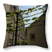Any Space Can Be A Garden - Creative Urban Gardening From Amsterdam Throw Pillow
