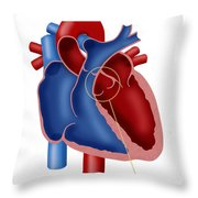 Aortic Valve Throw Pillow