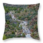 Apache Trail River View Throw Pillow