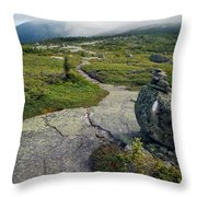 Appalachian Trail Mountain Path Saddleback Maine Throw Pillow