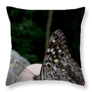 Appalachian Empress Throw Pillow