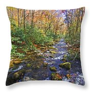 Appalachian Highlands Throw Pillow