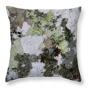 Appalachian Stone Flora Throw Pillow