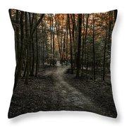 Appalachian Trail Throw Pillow