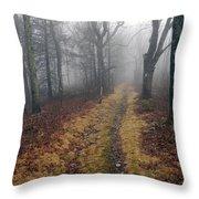 Appalachian Trail Fog Throw Pillow
