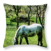 Appaloosa In Pasture Throw Pillow