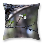 Appearances  Throw Pillow