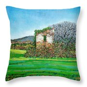 Appia Antica, House, 2008 Throw Pillow