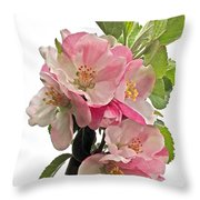 Apple Blossom Vertical Throw Pillow
