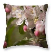 Apple Flowers Throw Pillow