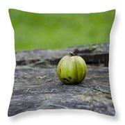 Apple Gourd Throw Pillow