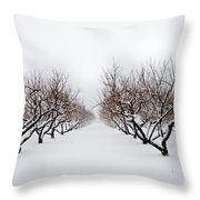 Apple Orchard Throw Pillow by Ken Marsh
