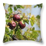 Apple Pickin' Time Throw Pillow