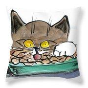 Apple Pie Vs. Hungary Cat Throw Pillow