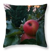 Apple Sunset Throw Pillow