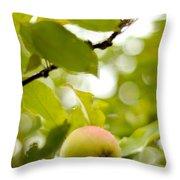 Apple Taste Of Summer 2 Throw Pillow