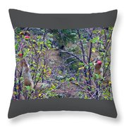 Apple Thief Throw Pillow