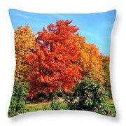 Apple Tree In September Throw Pillow