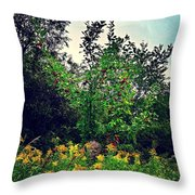 Apples And Hornets 2 Throw Pillow