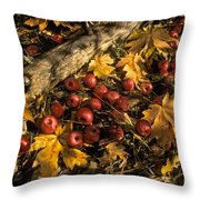 Apples In Fall Throw Pillow