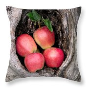 Apples In Tree Throw Pillow