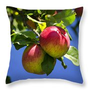 Apples On Tree Throw Pillow