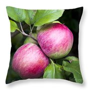 2 Apples On Tree Throw Pillow
